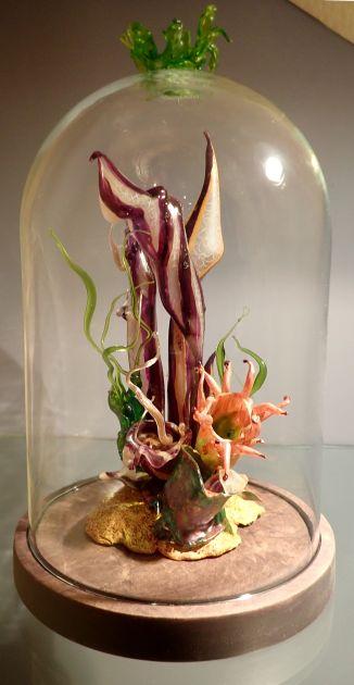 """Botanica Vulnerablis - """"Coralarees Striperum"""""""
