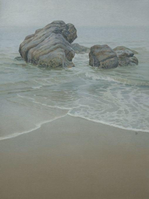 The Coast Near Penguin 6