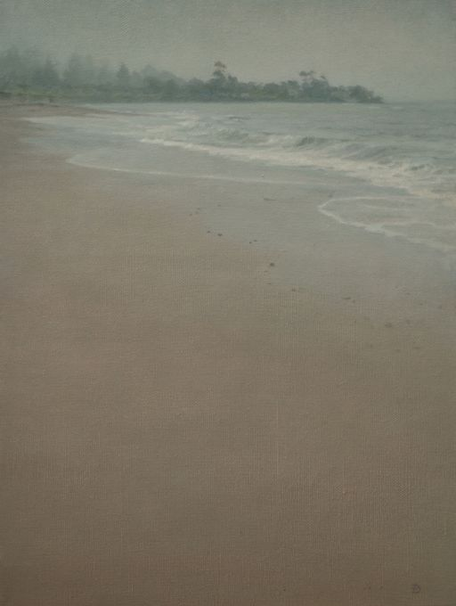 The Coast Near Penguin 9