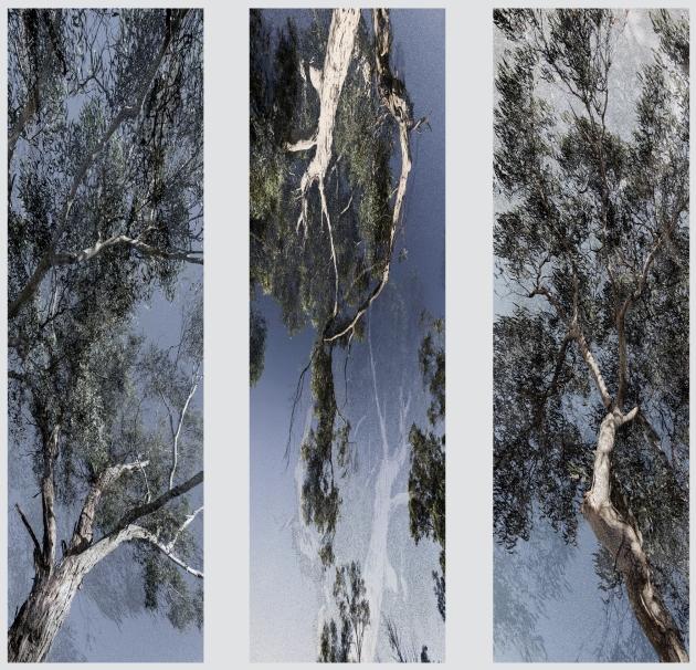 Fading Shadows - Triptych